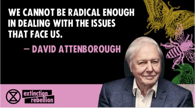 David A quote MC1
